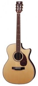 Acoustic-Guitar-Lessons